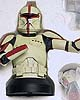 Star Wars Clone Trooper Captain Mini Bust