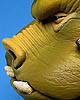 Star Wars Gamorrean Guard Mini Bust
