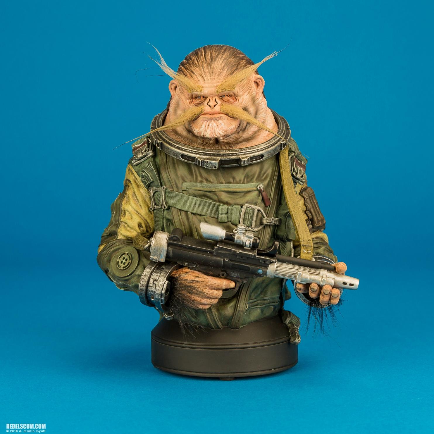 Star Wars Gentle Giant Rogue One Bistan Mini-Bust Statue