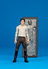 Han Solo (Carbonite)