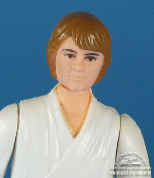 Luke Skywalker with Dark Brown Hair