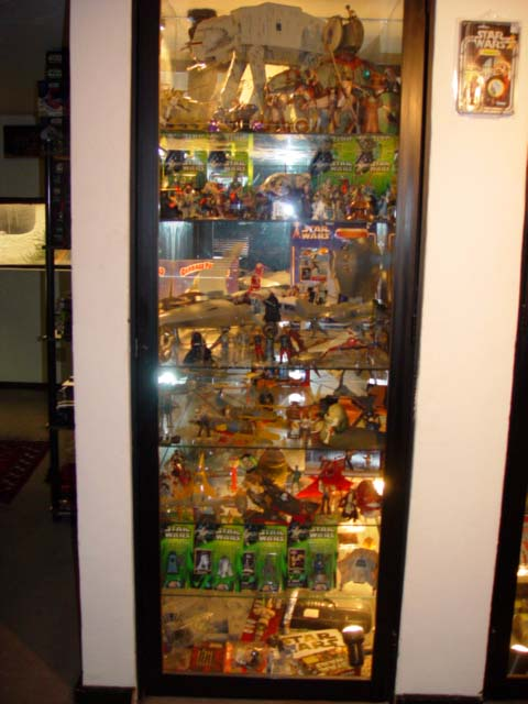 Cesar Bernal's Collection