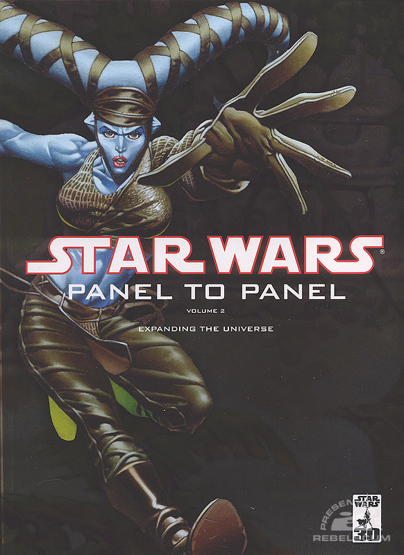 Panel to Panel – Expanding the Universe #2